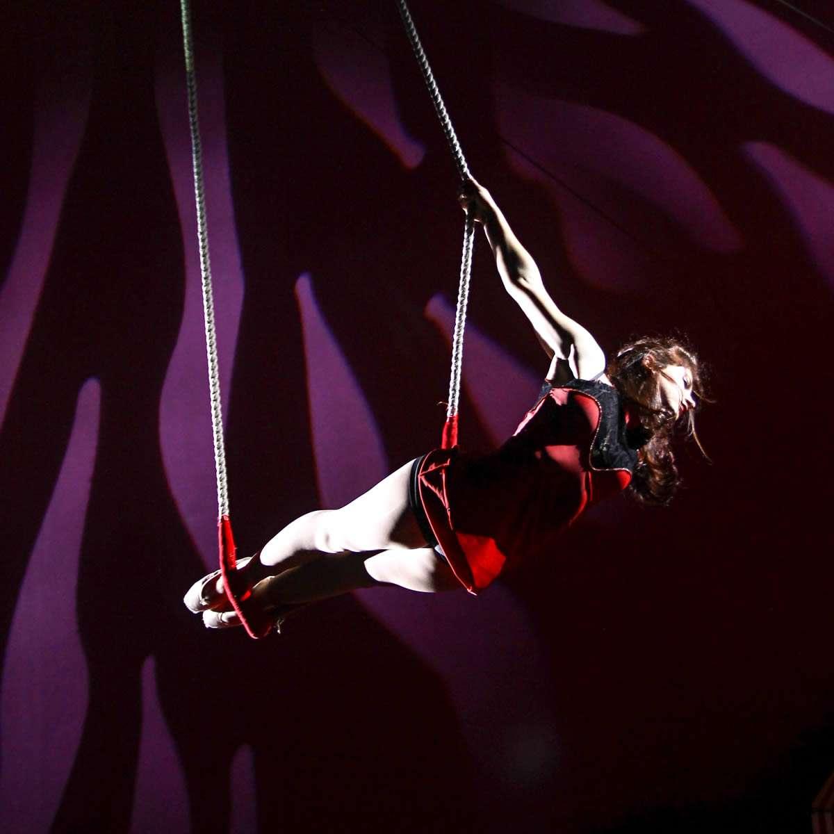 Piccolo Circo dei Sogni - Discipline Aeree - Purple
